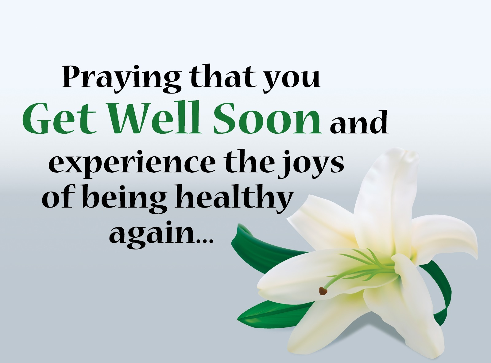 Get Well Soon Wishes Quotes Messages Images