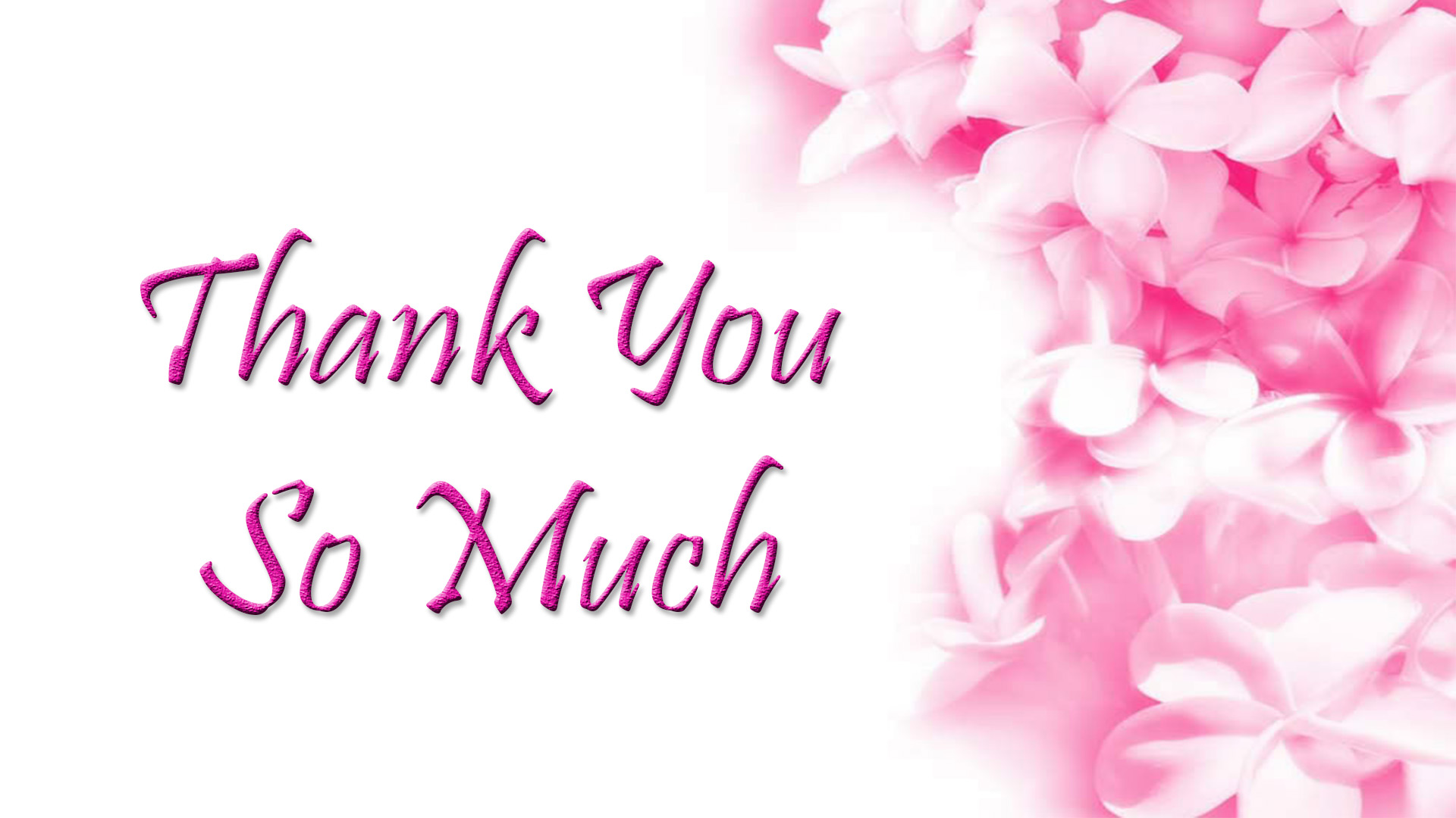 Thank you wishes quotes messages images thank you cards thank you image m4hsunfo