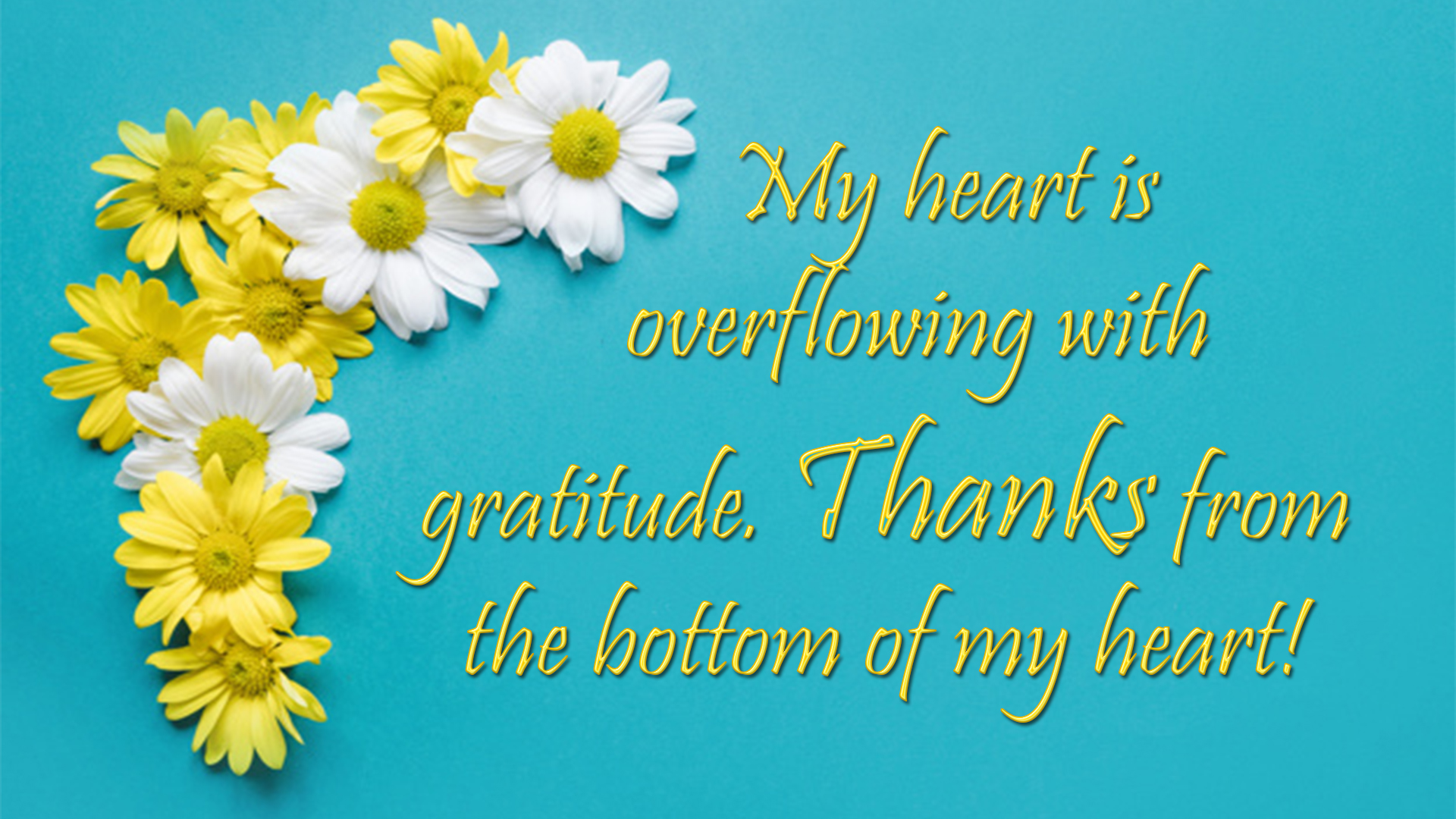 Thank You Wishes Quotes Messages Images Thank You Cards