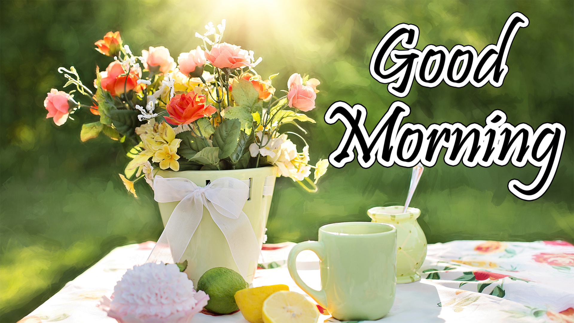 Good Morning Images Pictures Hd Wallpapers Free Download